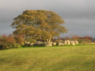 A Neolithic Nerve Centre