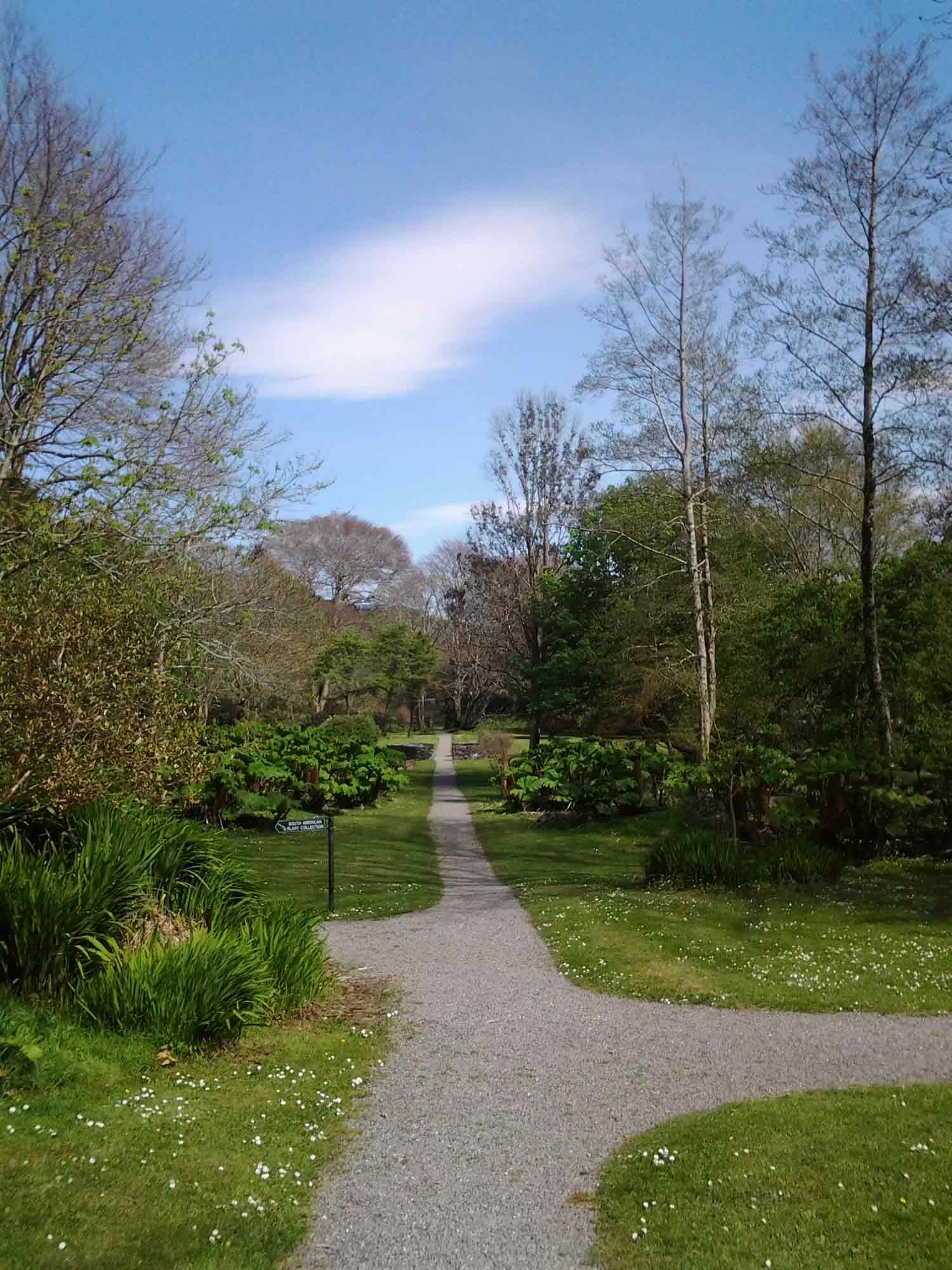 Garden paths at Derrynane House