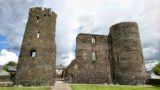 Exterior view of Ferns Castle