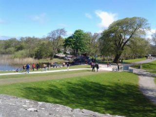 Ross Castle parkland
