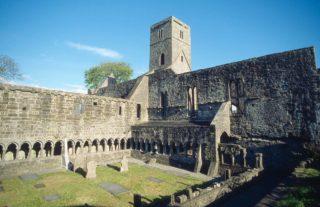 Sligo Abbey courtyard