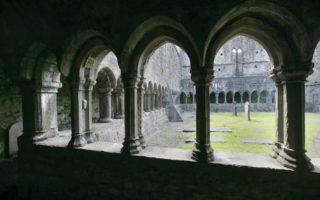 Cloister love knot stone Sligo Abbey