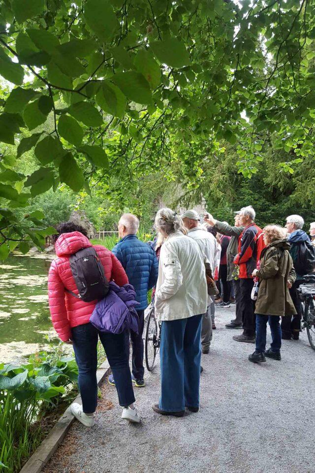 Dusk Chorus at Kilkenny Castle Park