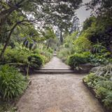 National Botanic Gardens Kilmacurragh, an oasis of rare horticultural delights