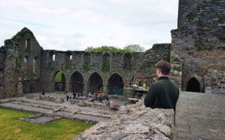 Surveying Swifts at Jerpoint Abbey