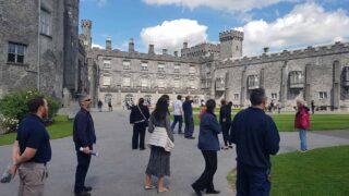 Surveying Swifts at Kilkenny Castle