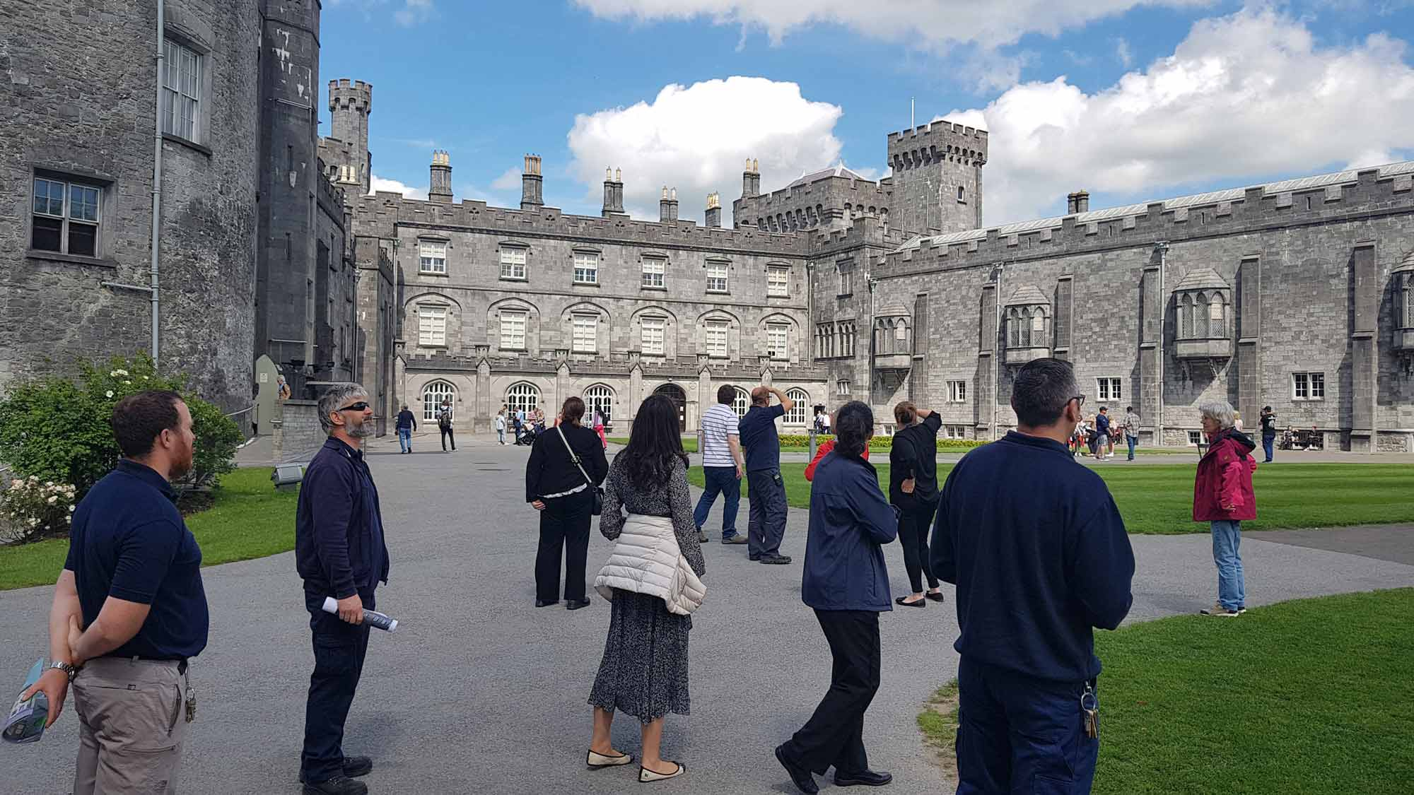 Surveying Swifts at Kilkenny Castle