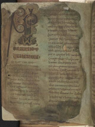 Book of Mulling