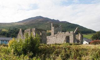 Take a Hike – Slieve Foye Woods and the Táin Way